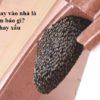 Ong bay vào nhà là điềm báo gì, tốt hay xấu ?