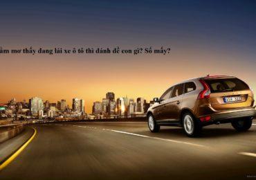Nằm mơ thấy lái ô tô đánh đề con gì, số mấy ?