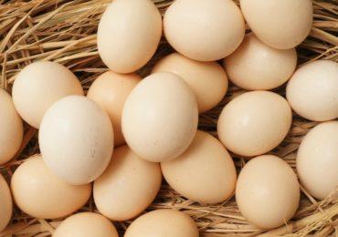 Nằm mơ thấy trứng gà đánh đề con gì, số mấy ?