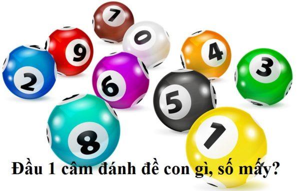 dau-1-cam-name-de-con-gi-so-may