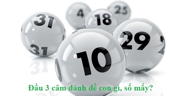 dau-3-cam-name-de-con-gi-so-may