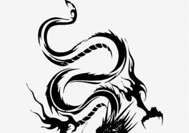 Nằm mơ thấy rồng đen, trắng là điềm gì, đánh đề con gì?
